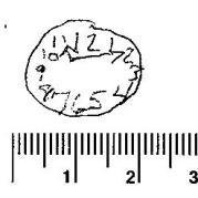 Micrographia 2Scan